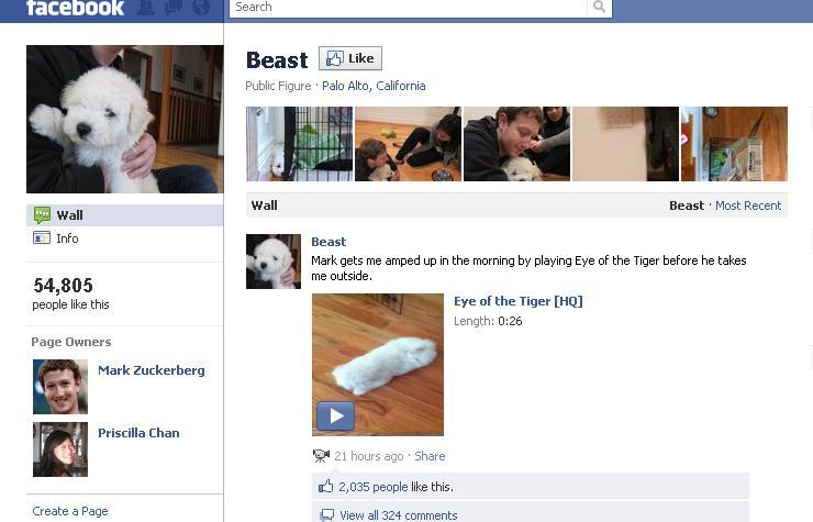 Inikah Alamat Profile FB Asli Pendiri Facebook Mark Zuckerberg & Pacarnya Priscilla Chan? (1/3)